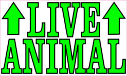 live animal magnet