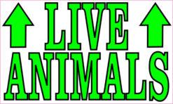 live animals magnet