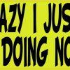 I'm Not Lazy I Just Really Enjoy Doing Nothing Bumper Sticker