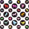 StickerTalk® Horse Camera Dots® Webcam Covers