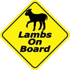 Lambs On Board Sticker