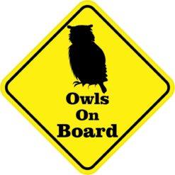 Owls On Board Magnet