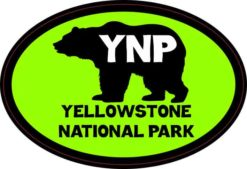 Green Bear Oval Yellowstone National Park Sticker