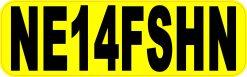 NE14FSHN Anyone for Fishing Vinyl Sticker