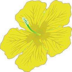 Yellow Hibiscus Vinyl Sticker