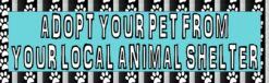 Adopt Your Pet Vinyl Sticker
