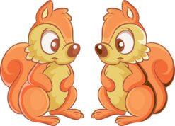 Squirrel Vinyl Stickers
