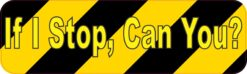 If I Stop Can You Vinyl Sticker