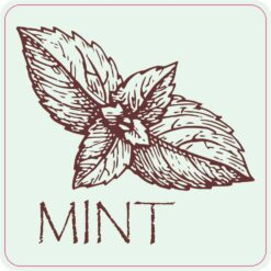 Mint Vinyl Sticker