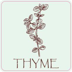 Thyme Vinyl Sticker