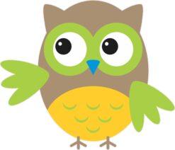 Green and Yellow Owl Vinyl Sticker