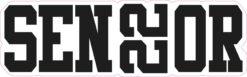 Senior 22 Vinyl Sticker