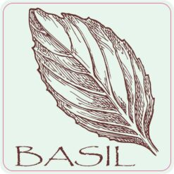 Basil Vinyl Sticker