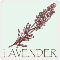 Lavender Vinyl Sticker