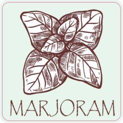 Marjoram Vinyl Sticker