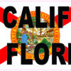 Don't California My Florida Vinyl Sticker