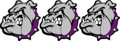 Left Facing Purple Collared Bulldog Mascot Vinyl Stickers